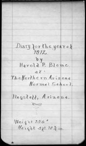 Harold Blome's Diaries, 1912-1918. MS.91.