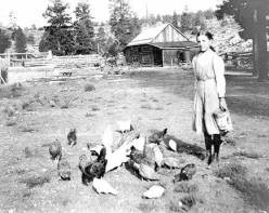 "[Edith Bass feeding her chickens.] </br><a href=""http://archive.library.nau.edu/cdm/ref/collection/cpa/id/3463"" target=""_blank"">Lauzon Family Collection NAU.PH.96.3.3.5</a>"