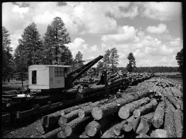 "Lumbering R.R.-Saginaw, Flagstaff. 1952? </br><a href=""http://cdm16748.contentdm.oclc.org/cdm/ref/collection/cpa/id/13769"" target=""_blank"">Tad Nichols Collection NAU.PH.99.3.17.5.16</a>"