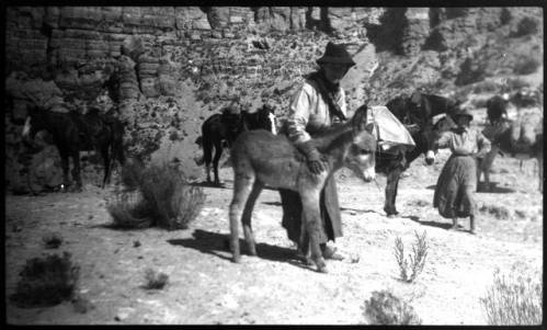 """Women with baby burros and horses in the Grand Canyon</br><a href=""""http://archive.library.nau.edu/cdm/ref/collection/cpa/id/7814"""" target=""""_blank"""">Emery Kolb Collection NAU.PH.568.1651</a>"""