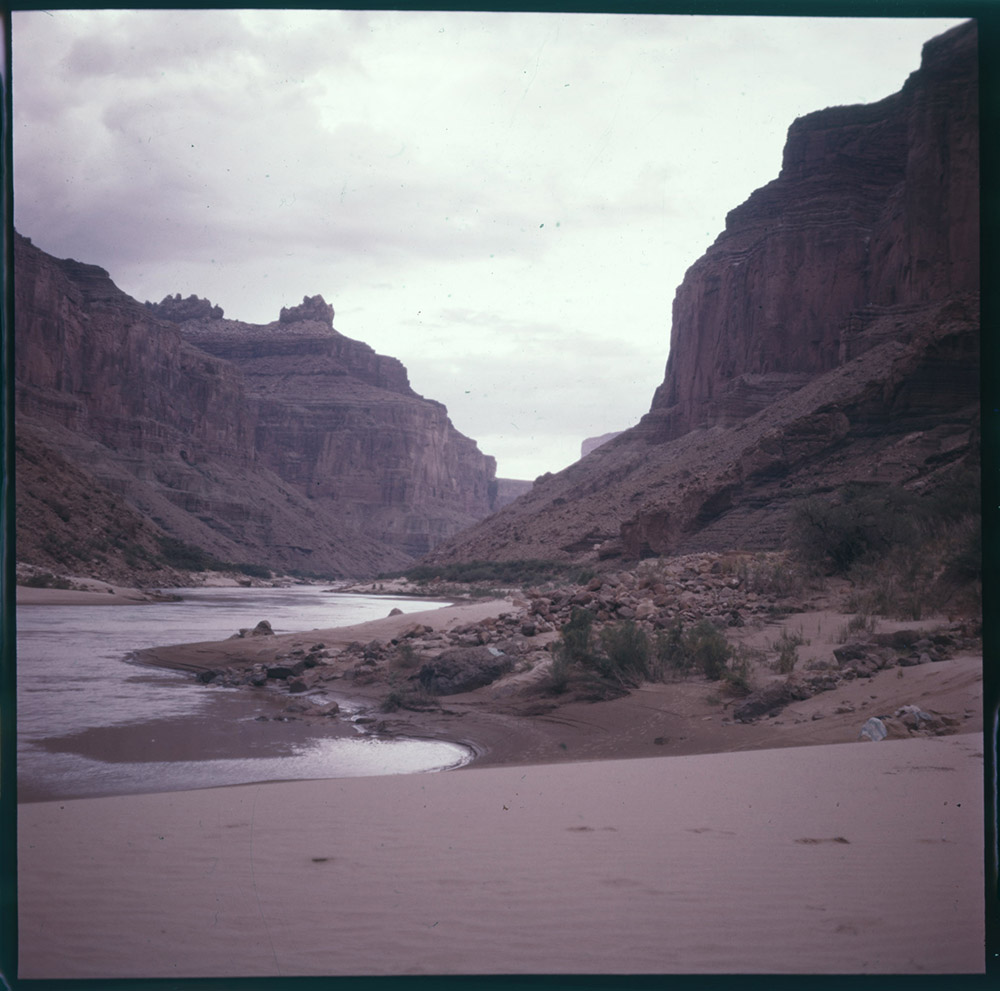 Katie Lee standing near the Colorado River confluence