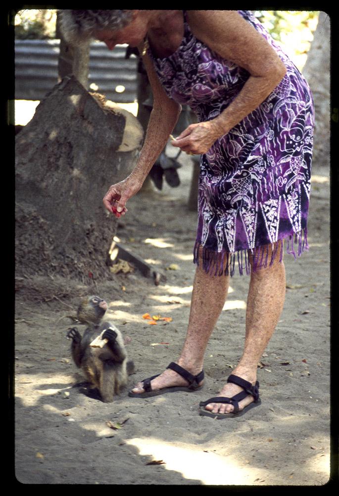 Katie Lee feeding a monkey